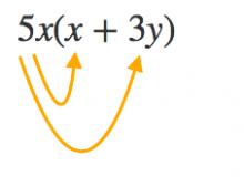 単項式,多項式,乗法,除法